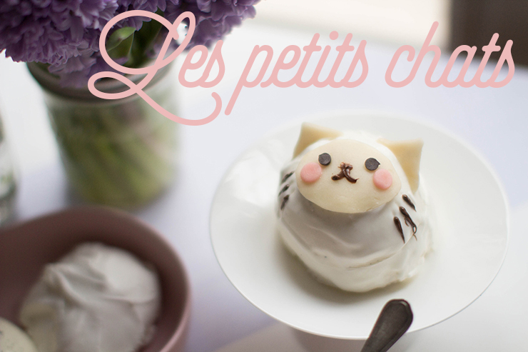 make-my-lemonade-do-it-yourself-diy-petits-chats-3-bis