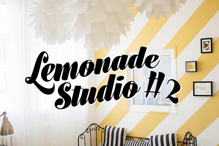 make-my-lemonade-do-it-yourself-diy-lemonade-studio-entree